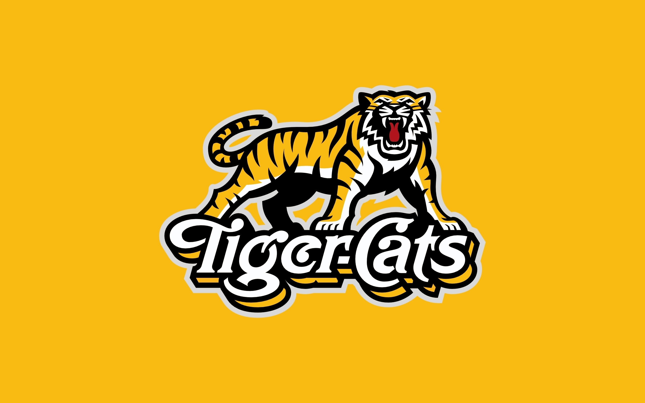 Tiger Cat Logo